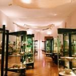 "Interior of the Museo Nazionale d'Arte Orientale ""Giuseppe Tucci"", Rome"