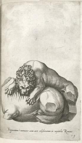 Giovan Battista de' Cavalieri, Fragmentum e marmore mira arte celeberatum in capitolio Romae [Lion Attacking a Horse group], burin on copper plate engraving, tav. 79, The Getty Research Institute. [9]