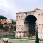 Rhinoceros - Fondazione Alda Fendi Esperimenti, in front of the Arch of Gianus Quadrifrons, Rome